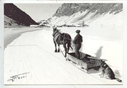 Une Journée De Labeur Enfin Finie - Attelage Cheval Traineau Village Chien Neige Vallée - Les Alpes Pittoresques - Paysans