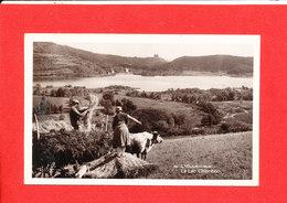 PAYSAN ATTELAGE BOVIN Cpa Glacée La Moisson  Lac De Chambon    51 G D ' O - Paysans