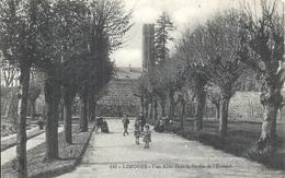 HAUTE VIENNE - 87 - LIMOGES - Allée Jardin évêché - Limoges