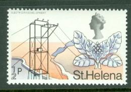 St Helena: 1971   QE II - Pictorial - Decimal Currency    SG261    ½p       MNH - St. Helena