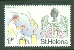 St Helena: 1971   QE II - Pictorial - Decimal Currency    SG262    1p       MNH - St. Helena