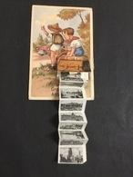 1 Oude Postkaarten  Groeten Uit Antwerpen - Scoutisme