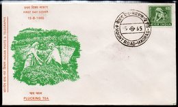 INDIA, 1965 PLUCKING TEA FDC - Storia Postale