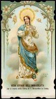 °°° - Vera Effige Dell'immacolata Che Si Venera Nella Chiesa Di S. Bernardino In Crema °°° - Cremona