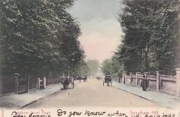 AO61 Leigham Court Road, Streatham Hill, London - Animated, 1904 Duplex Postmark - London Suburbs