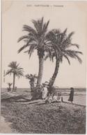 Tunisie: CPA: Carthage: Palmiers - Port Punique - Tunisie