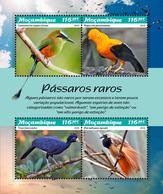 Mozambique. 2019 Rare Birds. (0109a) OFFICIAL ISSUE - Oiseaux