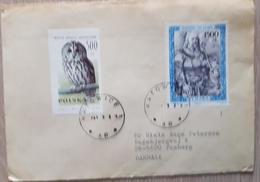 Poland Katowice Owl Denmark - Poland