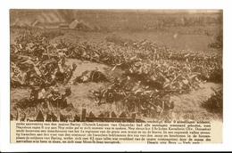 CPA - Carte Postale - Belgique- Waterloo -Panorama Van Den Slag - De Hoeve Van De Haie Sainte VM635 - Waterloo