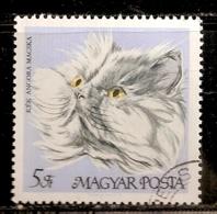 HONGRIE   N°  1954    OBLITERE - Hongrie