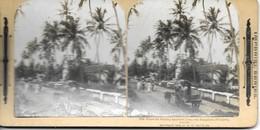 Ceylon, Where The Wealthy Residents Live, The Bungalows Of Colpetty      (bon Etat) - Photos Stéréoscopiques
