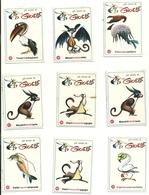 FIGURINE GIOELE   COLUSSI  PERUGIA-- ANNI  50-60  RARE --9  PEZZI - Altre Collezioni