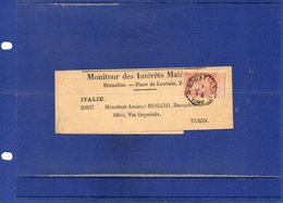 ##(DAN192)-POSTAL HISTORY-Belgium - Bruxelles -1896  -  Newspaper Wrapper  To Torino - Italy - 1893-1900 Barba Corta