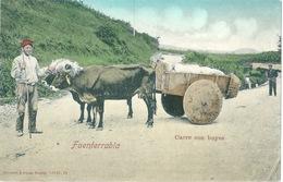 ESPAGNE Char à Boeufs ETHNIC Fuenterrabia - Espagne