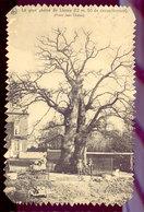 Cpsm Liernu  1914 - Eghezée