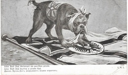 GUERRE 14/18. CHIEN De Guerre - Bouledogue John Bull - Guerre 1914-18