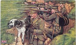 GUERRE 14/18. CHIEN Gardien Des Tranchées Anglaises - Illustration - Guerre 1914-18