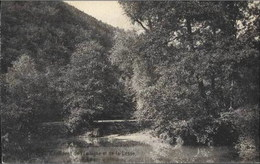 VALLEE DE LA LESSE - Confluent De L'Iwoigne Et De La Lesse - België