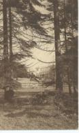 Mariemont - Domaine De Mariemont - Le Parc - La Grande Pelouse Et Le Château - 1929 - Morlanwelz
