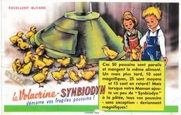 Buvard Volacrine Castagné La Volacrine Synbidyn Démarre Vos Fragiles Poussins Déstockage à Saisir - Farm