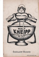 Buvard Kneipp Malt Kneipp Facilite La Digestion Déstockage à Saisir - Food