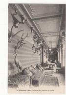 CPA 76 - Eu - Château D'Eu - Galerie Des Trophées De Chasse   : Achat Immédiat - Eu