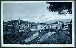 MODENA - BENEDELLO  PANORAMA 1928 - Modena