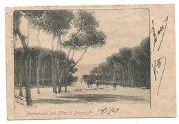 OLD POSTCARD - LEBANON - PROMENADE DES PINS à BEYROUTH , 1903 . . - Libanon