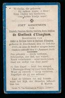 ADEL NOBLESSE  ELIZABETH DE GHELLINCK D'ELSEGHEM  LOCHRISTI  1918   1919 - Décès