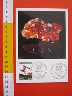 A.09 ITALIA ANNULLO - 1996 TORINO 25° MINERALEXPO MINERALI CRISTALLO MINERALE GRANATO - Minerali
