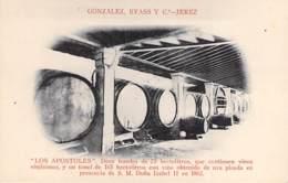 VIGNES Vin - GONZALEZ, BYASS Y - Vino De JEREZ : LOS APOSTOLES . Doce Toneles De 75 Hectolitros - CPA - - Vignes