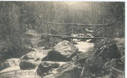 Nonceveux - Pont Rustique Sur Le Ninglinspo - Propriété De L'Hôtel De La Chaudière - 1913 - Aywaille