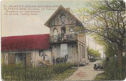 Alveringem - Forthem, Bij Veurne  *  Kweekerij Het Jeneverbosch  Ev. Dedeurwaerder-Boussemaere - Alveringem