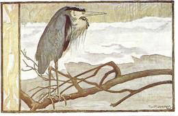 Ardea Cinerea (25V) - Oiseaux