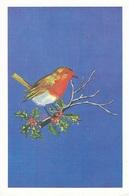 A.E. Baker (30V) - Oiseaux