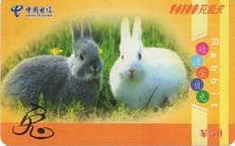 TARJETA TELEFONICA DE CHINA. FAUNA - CONEJOS. NNT(96188)-2005-2-(4-3). (661) - Conejos
