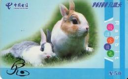 TARJETA TELEFONICA DE CHINA. FAUNA - CONEJOS. NNT(96188)-2005-2-(4-4). (662) - Conejos
