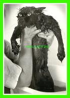 CHATS - CATS - UN CHAT NOIR MOUILLÉ - JIM Mc LAGAN 1982 -  ART UNLIMITED - - Chats