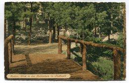 CPA - Carte Postale - Allemagne - Aachen - Blick In Den Heldenhain Im Stadtwald - 1919 ( M7343) - Aachen