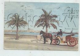Palma De Mallorca  (Espagne, Islas Baleares) :  Enganche Paseo Maritimo Y Vista Del Catedral En 1960 (animado) PF. - Palma De Mallorca