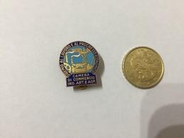 Distintivo Camera Di Commercio Industria Artigianato E Agricoltura (S.Johnson) - Pin's