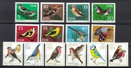 DDR 1973 + 1979, Vogel Birds Oiseau Pájaro Uccello Passaro **, MNH - Sperlingsvögel & Singvögel