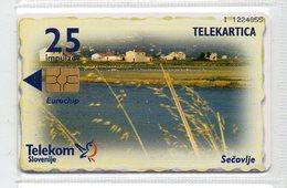 Telekom Slovenije 25 Imp. - SEČOVLJE - Slovenia