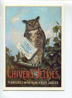 Chouette Publicité Chivers - Animaux & Faune
