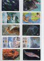 Lot Of 10 Phonecards - Croatie