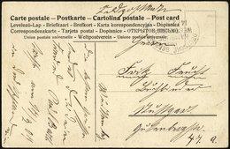 KAMERUN 1907, Feldpost-Ansichtskarte Von Kribi/Kamerun Nach Deutschland Mit Seepoststempel HAMBURG-WESTAFRIKA, Pracht - Kolonie: Kamerun