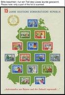 SAMMLUNGEN **, Bis Auf 2 Gestempelte Werte Komplette Postfrische Sammlung DDR Von 1963-81 In 3 Lindner Falzlosalben, Pra - Deutschland