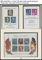 SAMMLUNGEN **, Postfrische Sammlung DDR Von 1953-62 Auf Lindner Falzlosseiten, Ab 1955 In Den Hauptnummern Komplett, Pra - Deutschland