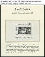 SAMMLUNGEN **, 1976-80, Kompletter Sammlungsteil Im Borek Falzlosalbum, Prachterhaltung - Deutschland