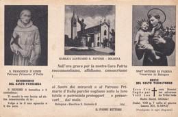 CARTOLINA - POSTCARD - BOLOGNA - BASILICA SANTUARIO S. ANTONIO - Bologna